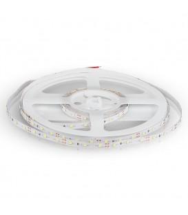 Bandă LED SMD3528 - 60LED, Alb rece IP20