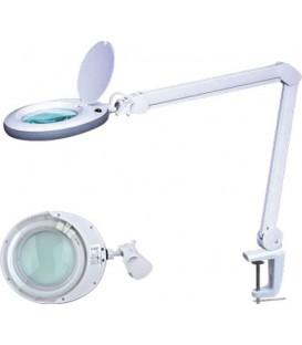 LAMP-5D-N1