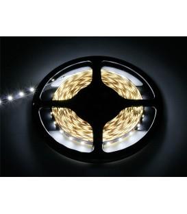Benzi cu LED-uri alb cald 3528 5m/300   DC BLED5M300DC
