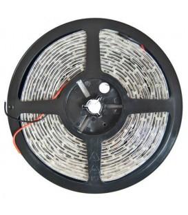 BANDA LED 12V 24W 300 LEDURI 5M ALB CALD LED3528-60WW